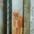 DanaBush_Caribou_Cutlines_2015